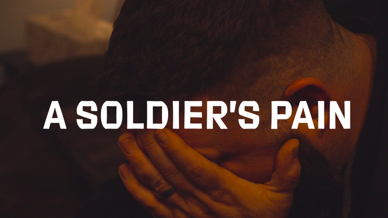A Solider's Pain_Website Button